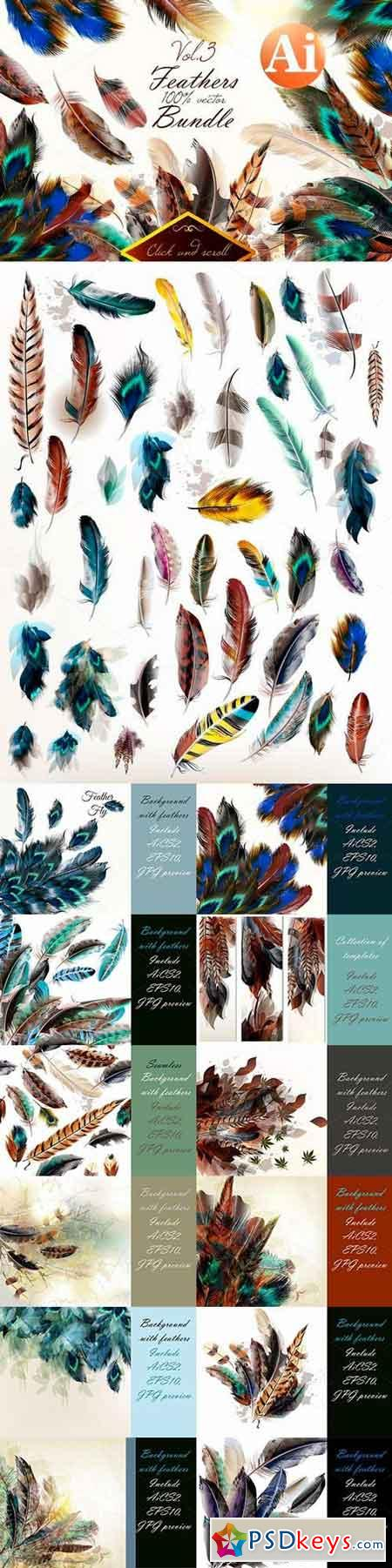 Colorful feathers bundle 677728