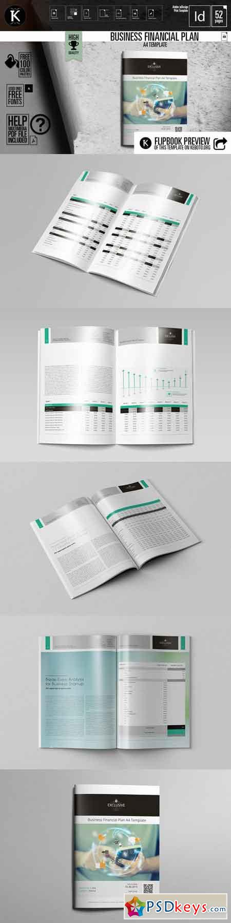 Lovely Template For Financial Plan Pictures Inspiration ...