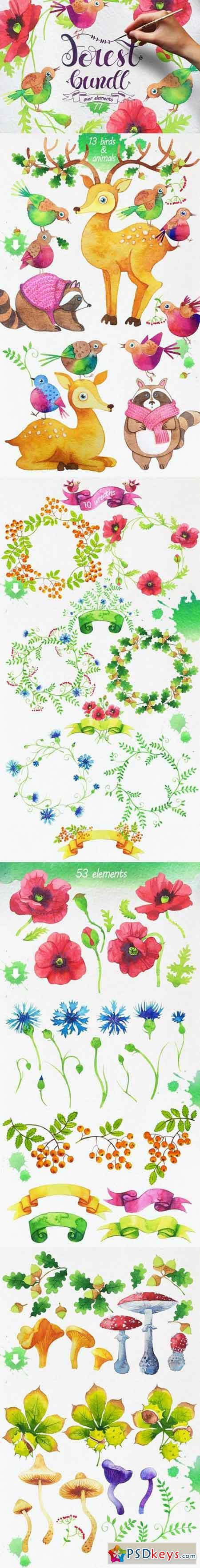 Watercolor Forest Bundle 729614