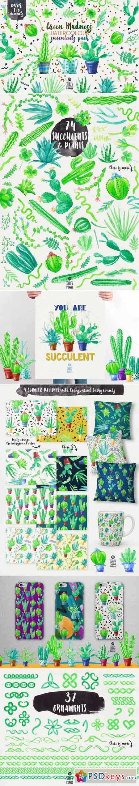 Green Madness-Watercolor Succulents 758298