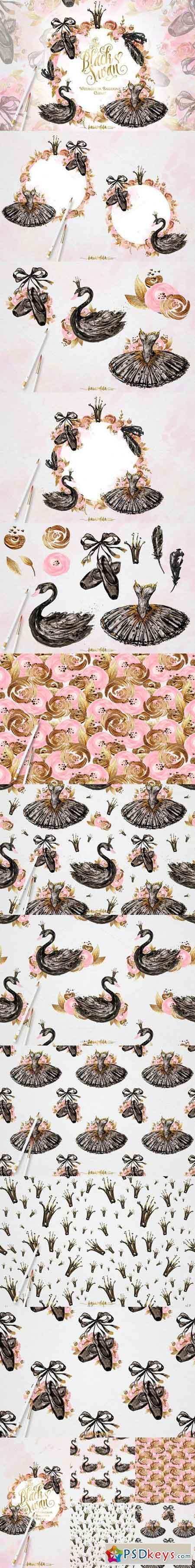 Black Swan 768332