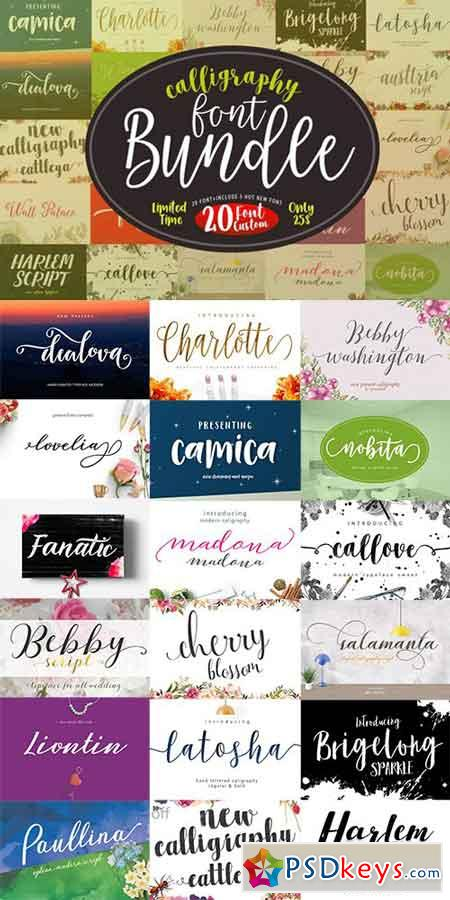 Font Bundle Caligraphy 882859