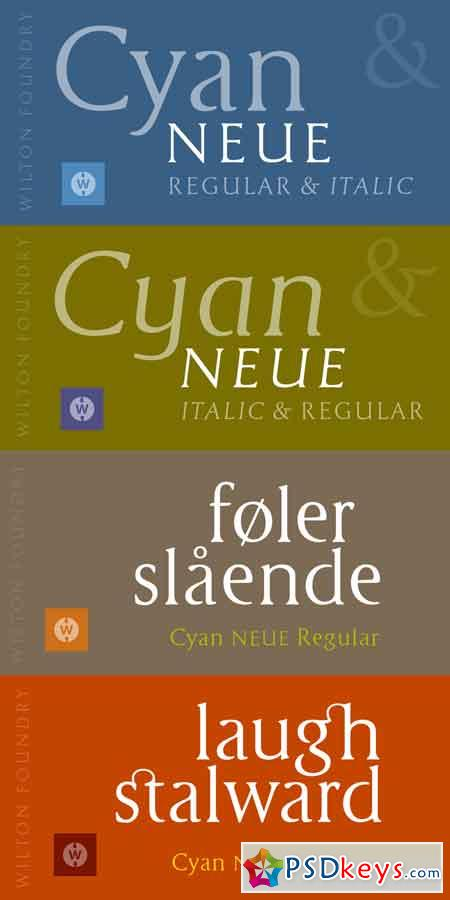 Cyan Neue Font Family - 2 Fonts