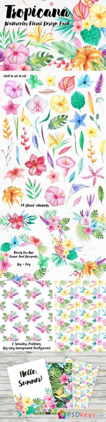 Watercolor Tropical Floral Pack 719315