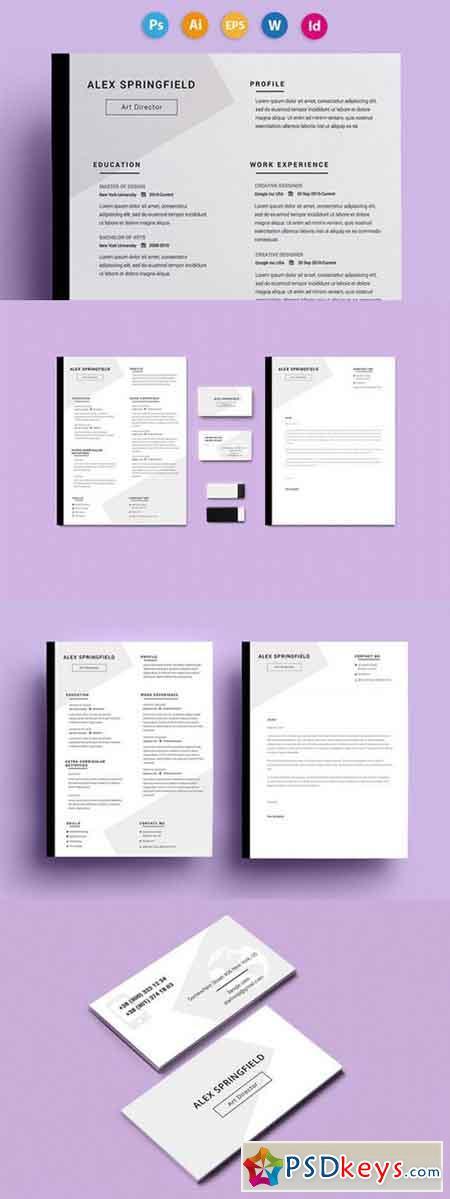 Resume CV - Springfield 560558