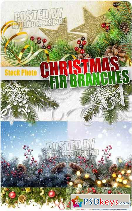 Christmas Fir branches 2 - UHQ Stock Photo