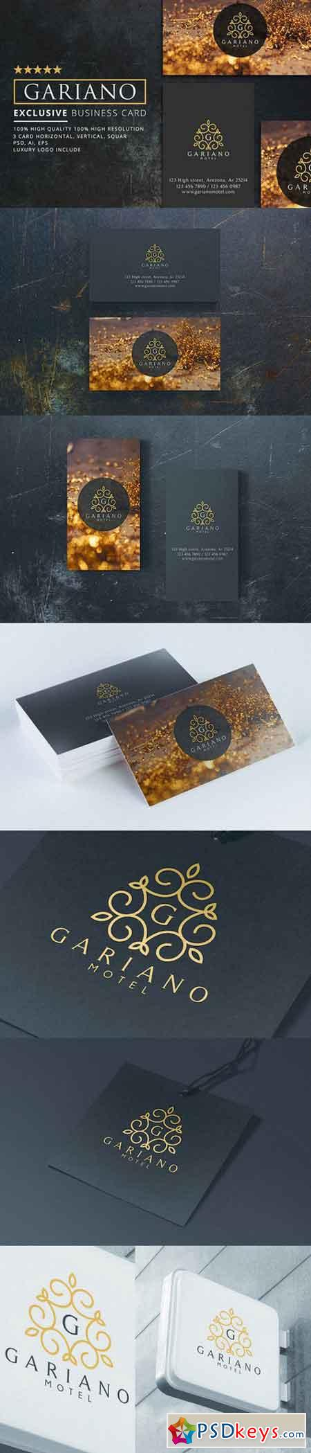 Gariano Luxury Business Card 3 in 1 Free