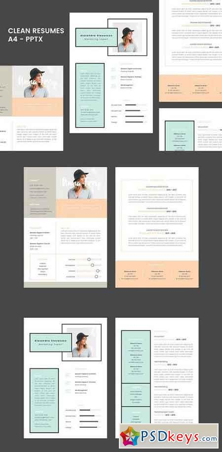 Resume 1.0 - Powerpoint 1024873