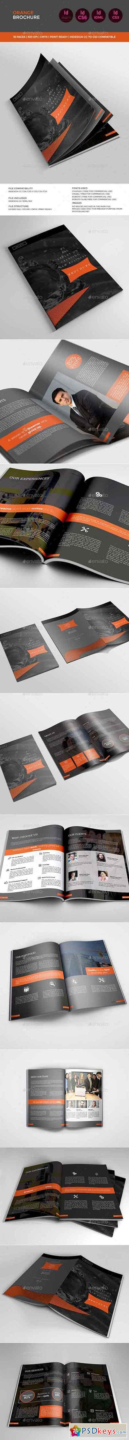 Dark Orange Brochure 11327892