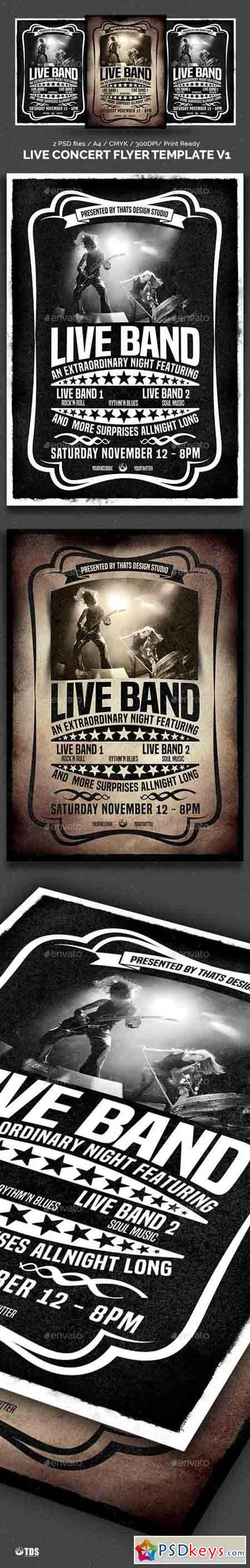 Nice Concert Flyer Template Pictures Inspiration - Entry Level ...
