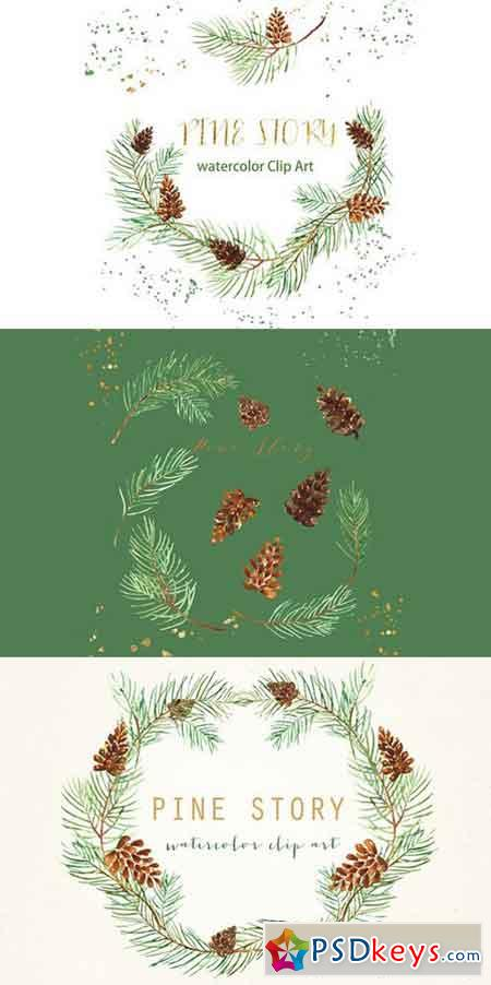 Pine branches. Watercolor Clip Art 394863