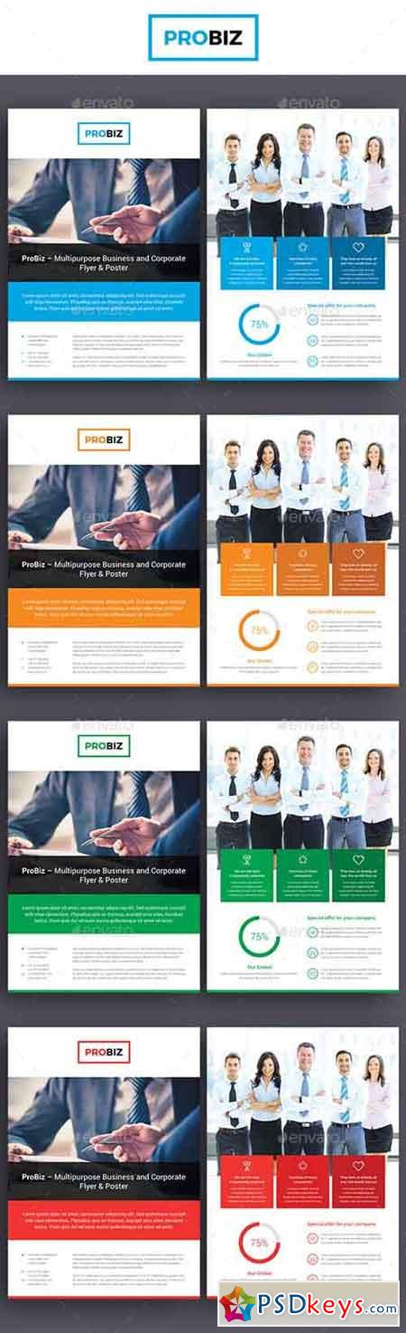 ProBiz – Business and Corporate Flyer Double Sided 19110743