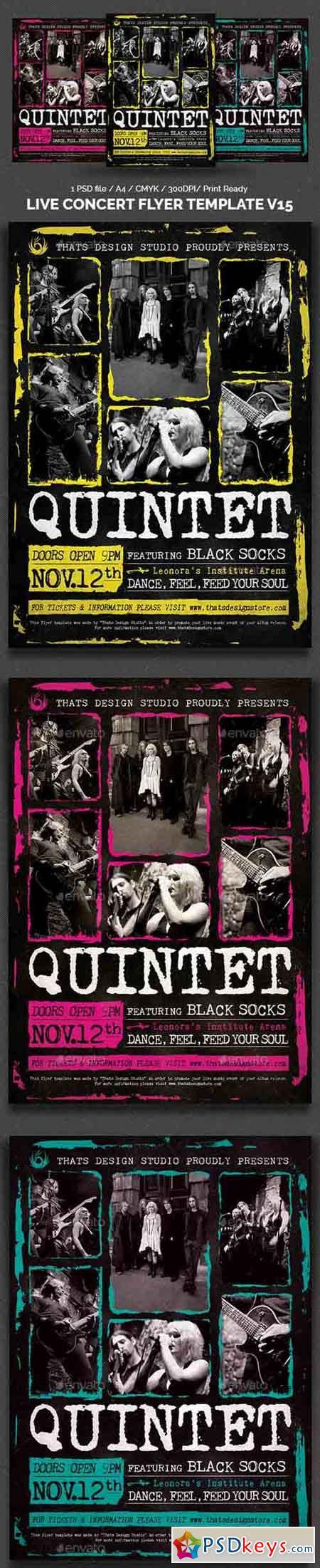 Live Concert Flyer Template V15 14445695