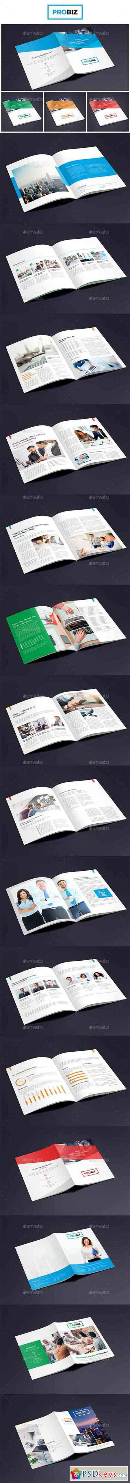 ProBiz – Business and Corporate Magazine 19203944