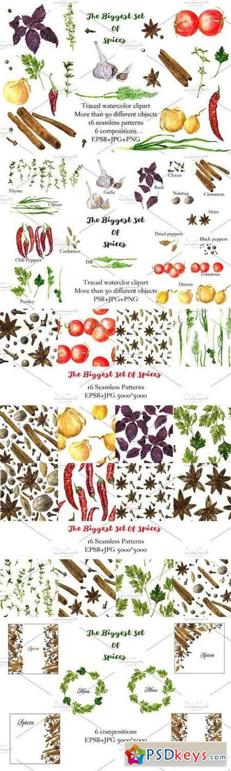 The biggest watercolor set of spices 686299
