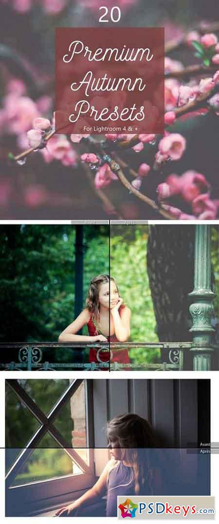 Pack 20 Premium Autumn Fall Presets 1167716
