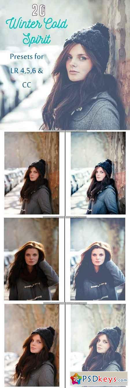 Pack 20 LR Presets Winter time 1167983