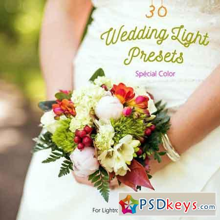 Pack 30 LR Presets Wedding Light Day 1167992