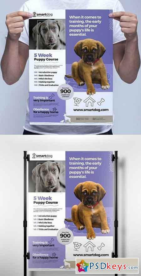 A3 Puppy School Poster Template 1198895 » Free Download