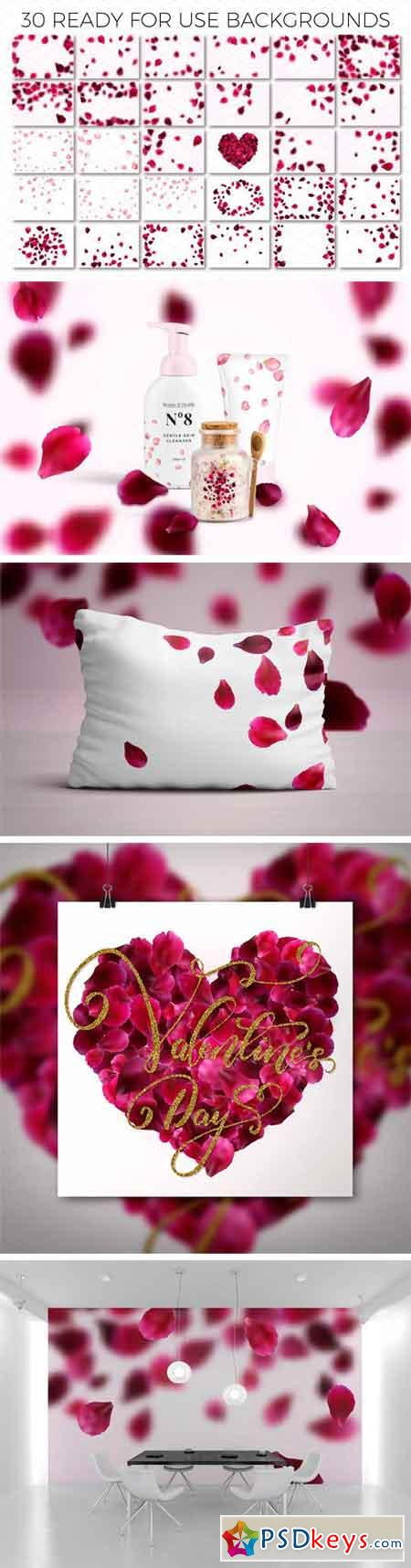 Rose Petals Backgrounds Constructor 1213371