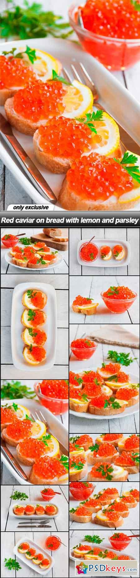Red caviar on bread with lemon and parsley - 11 UHQ JPEG