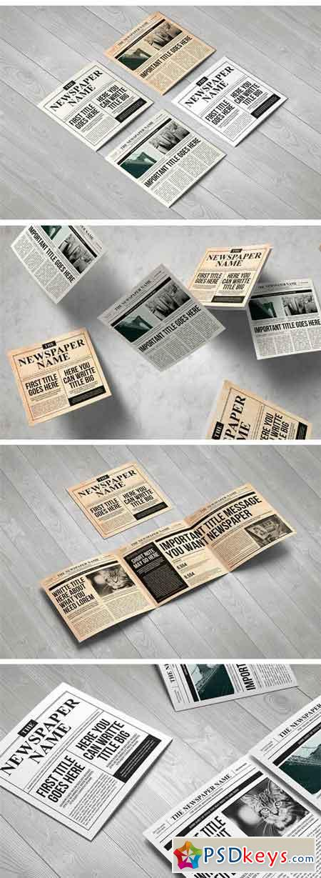 Newspaper Brochure Trifold 1257371