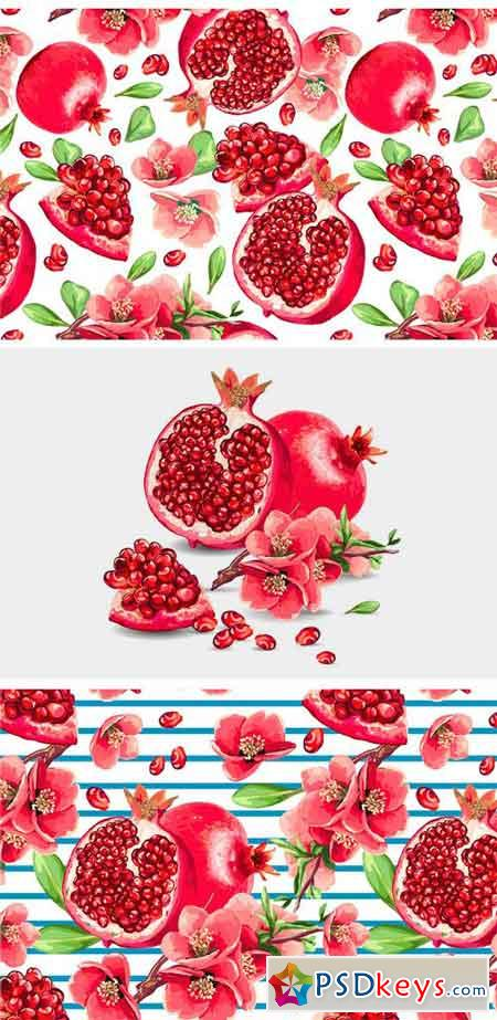 Set of Pomegranate Fruit and Flowers 1275856