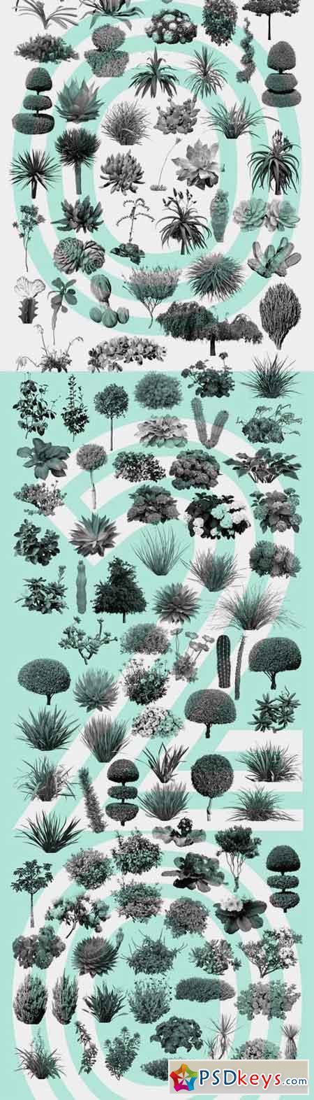 Plant Brushes v2 1297047