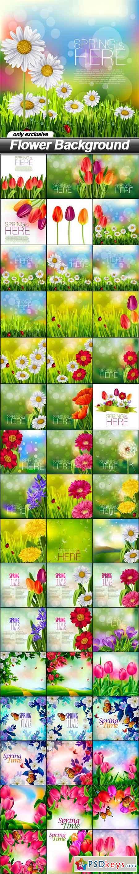 Flower Background - 48 EPS