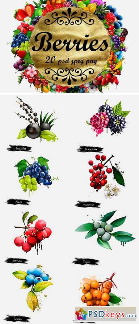 Berries. Digital Art Collection 1 1296923