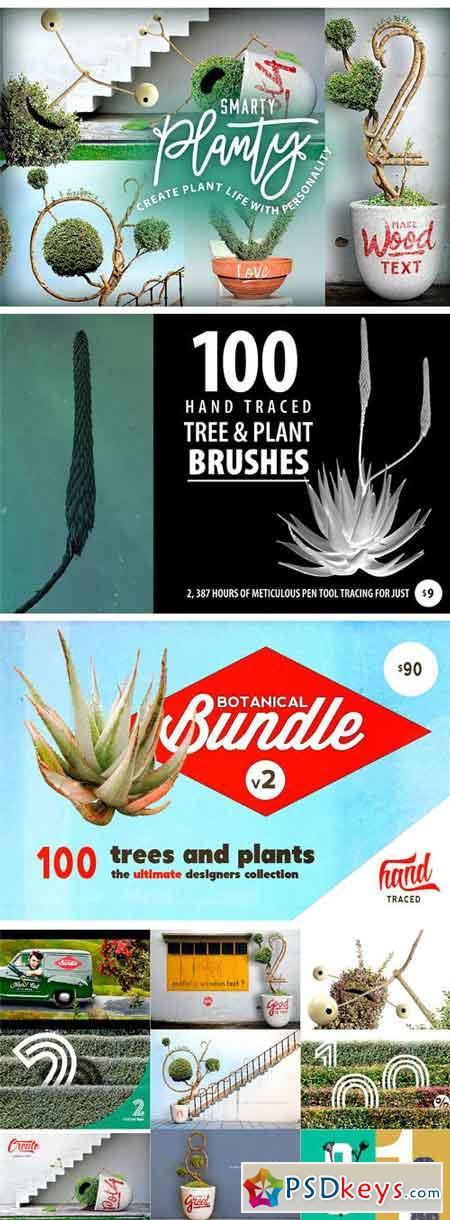 Botanic Shed  1296980