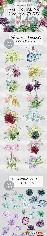 Watercolor Succulents 1289698
