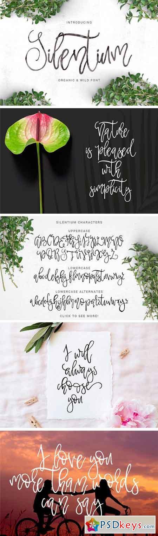 Silentium - Calligraphic Font 1303691