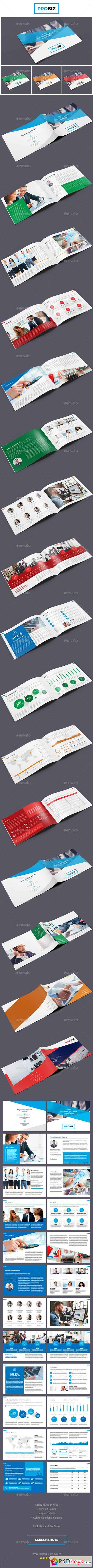 ProBiz – Business and Corporate Annual Report Horizontal 19428223