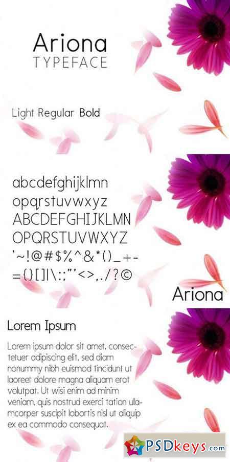 Ariona Font Family 1323577