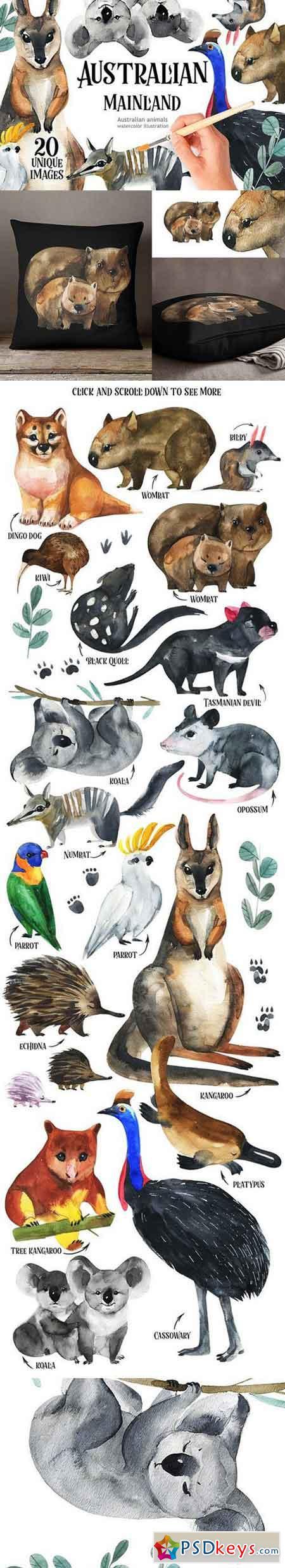 Australian Mainland-illustration set 1311841