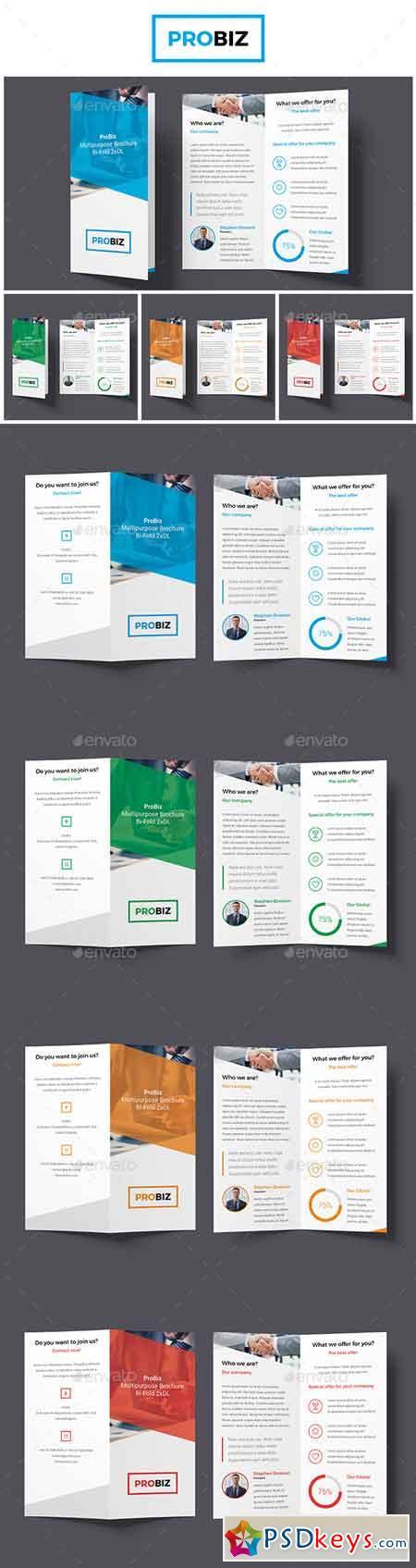 ProBiz – Business and Corporate Brochure Bi-Fold (2xDL) 19125132