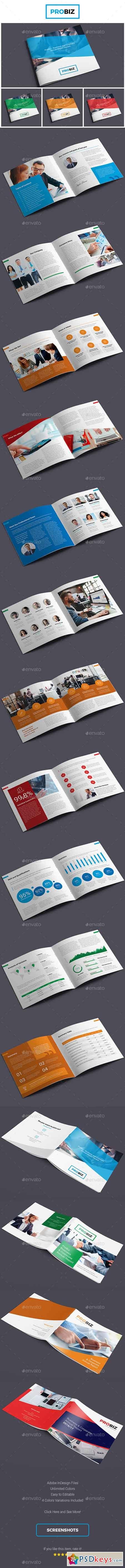 ProBiz – Business and Corporate Annual Report Square 19439606