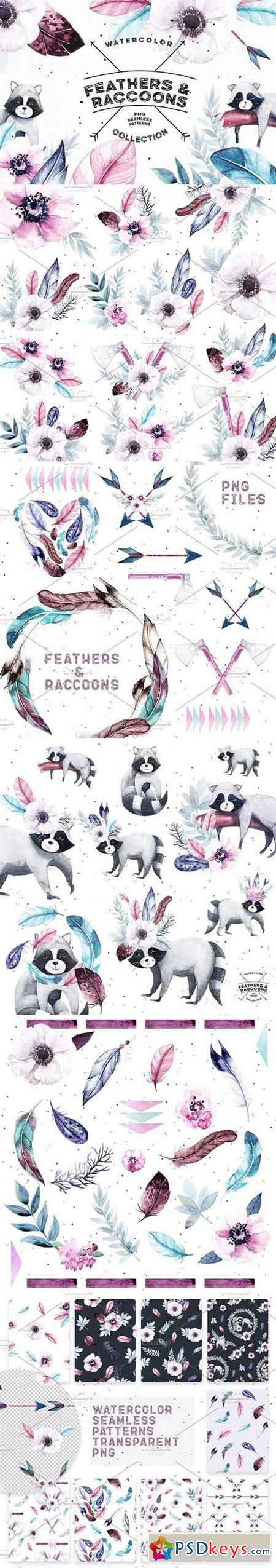 Watercolor Feathers & Raccoons 1329017