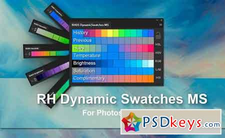 RH Dynamic Swatches MS 1341600