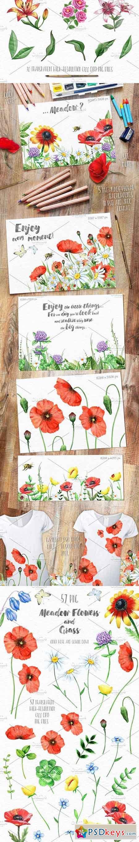 Floral set. Over 115 PNG 770282