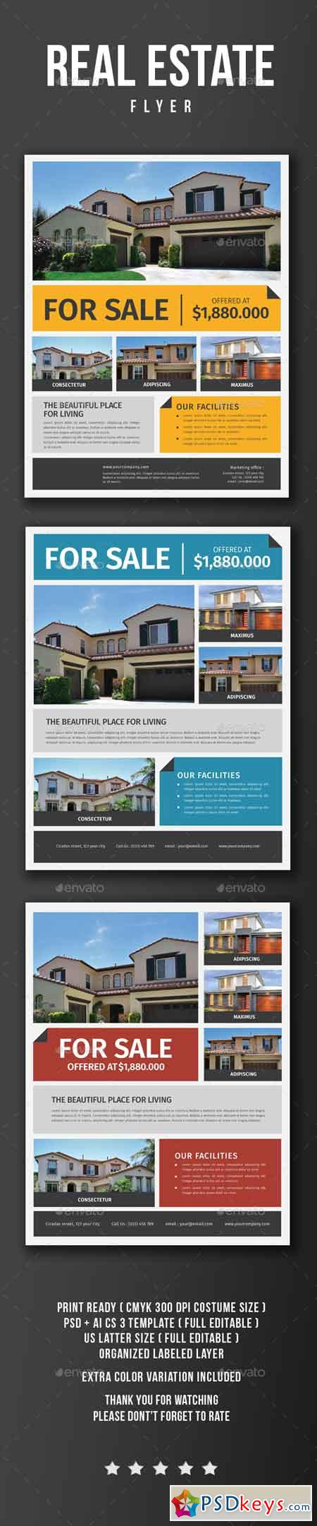 Real Estate Flyer 17026682