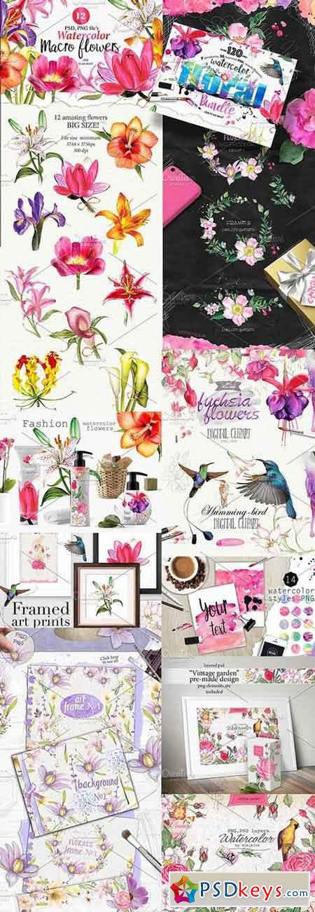 Over 120PNG watercolors 711447