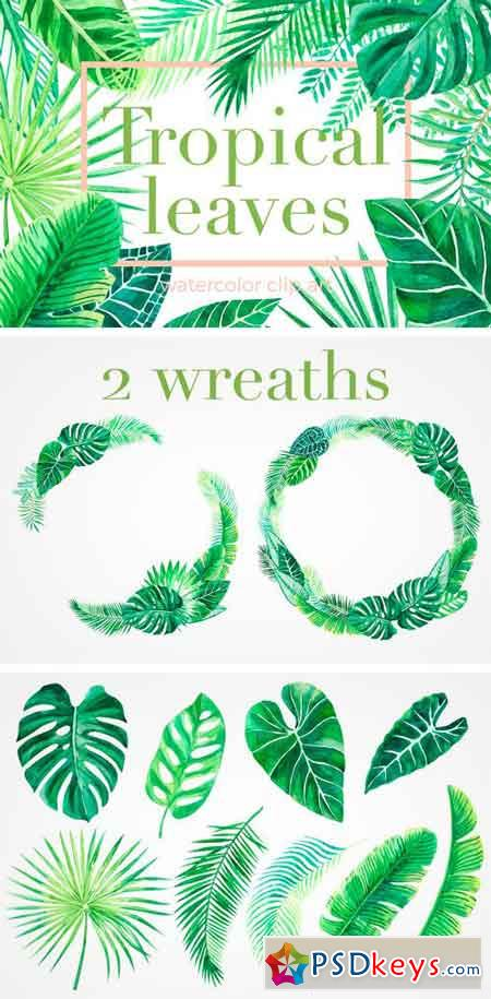 Tropical Leaves. Watercolor Clip Art 1408419