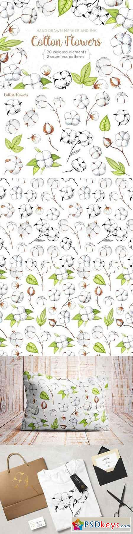Cotton Flowers Handdrawn Set 1436654