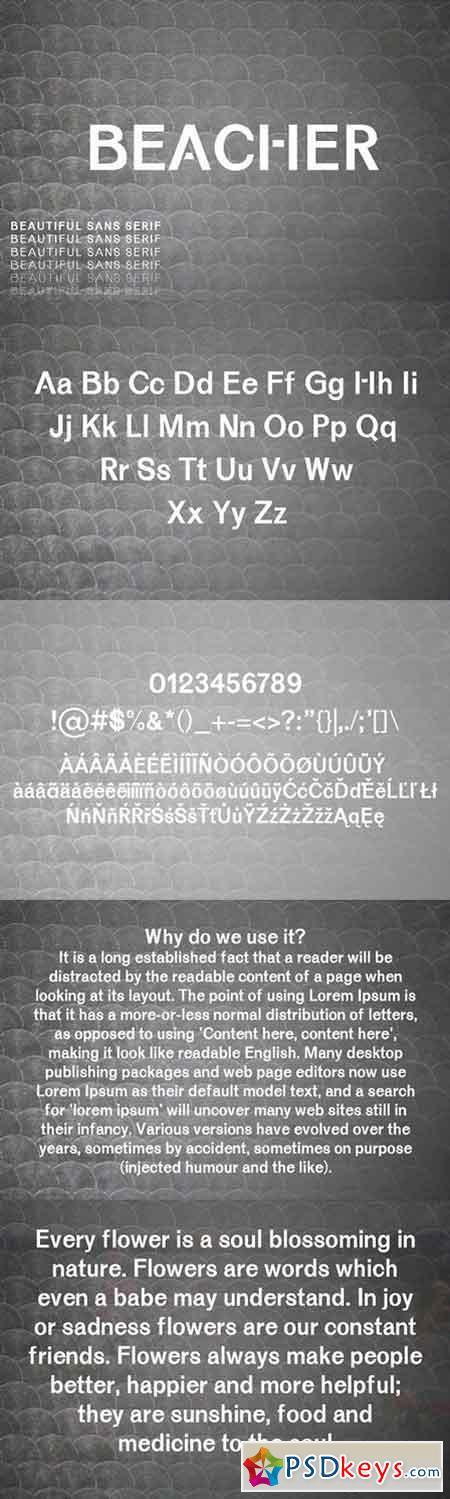 Beacher Sans Serif Font 1458175
