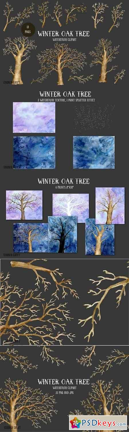 Watercolor Clipart Winter Oak Tree 1099021
