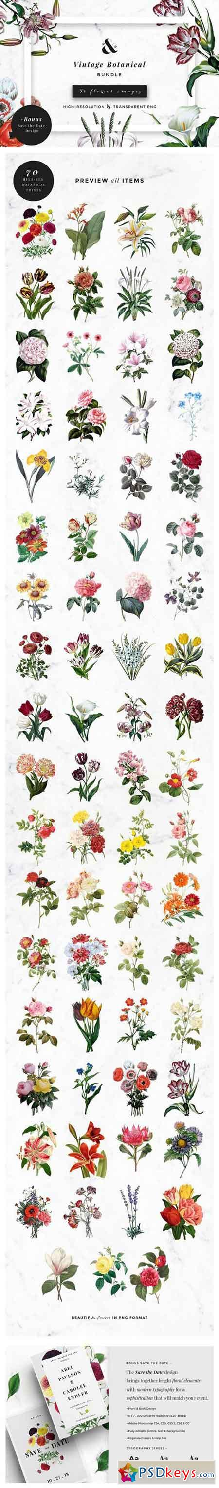 Vintage Botanical Bundle 1488786