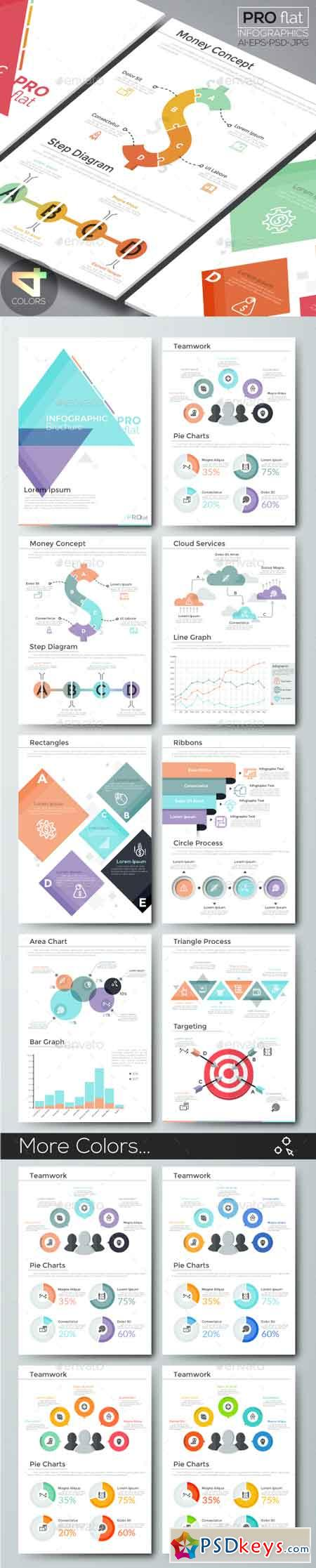 Pro Flat Infographic Brochure 10 (4 Versions) 20181940