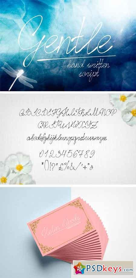 Gentle Script 1604075